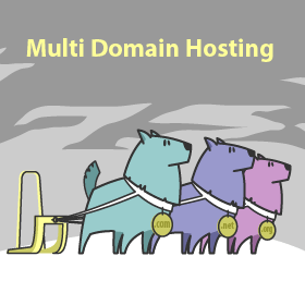 Multi Domain Hosting